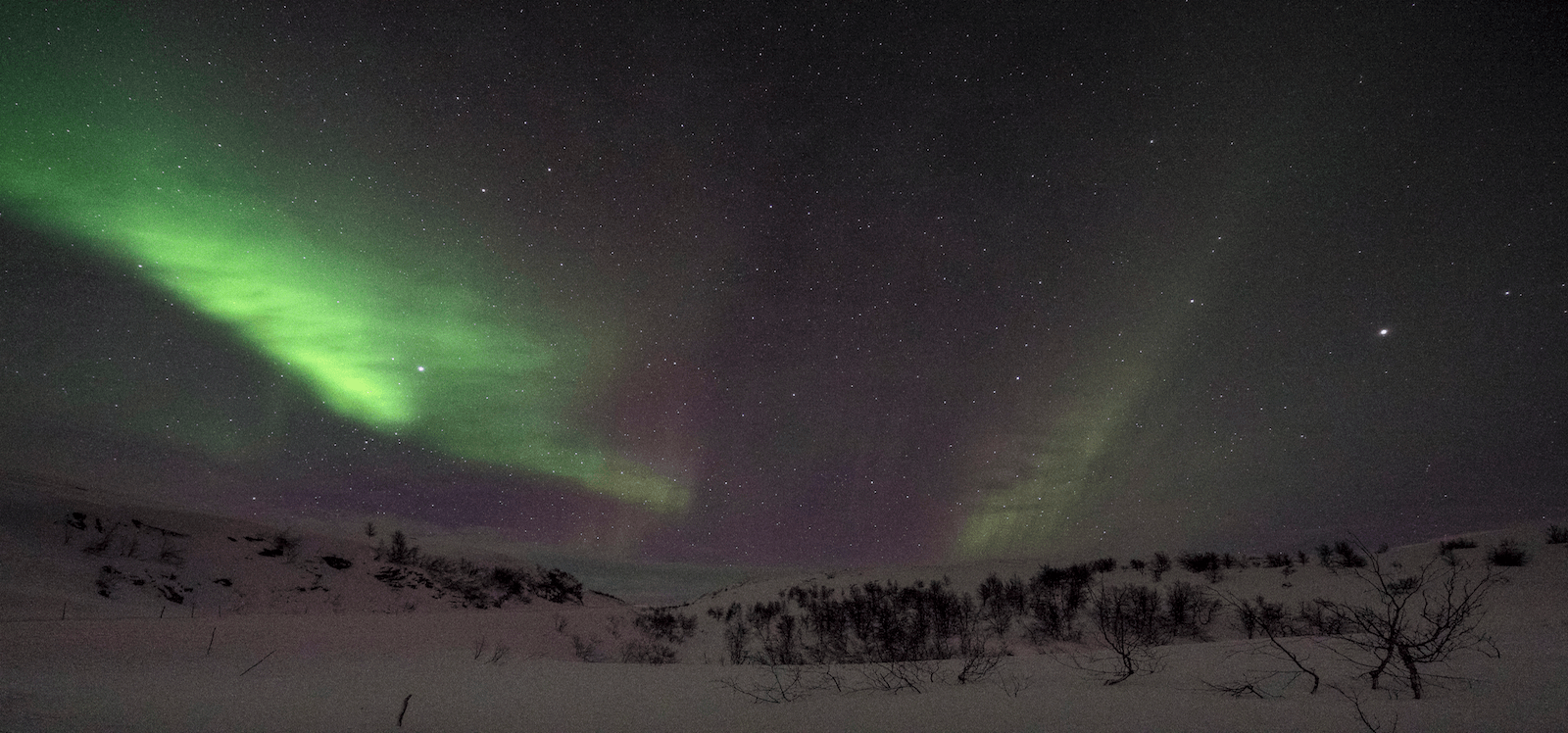 Green northern lights above snow landscape